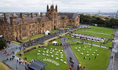 Đại học Sydney (The University of Sydney)